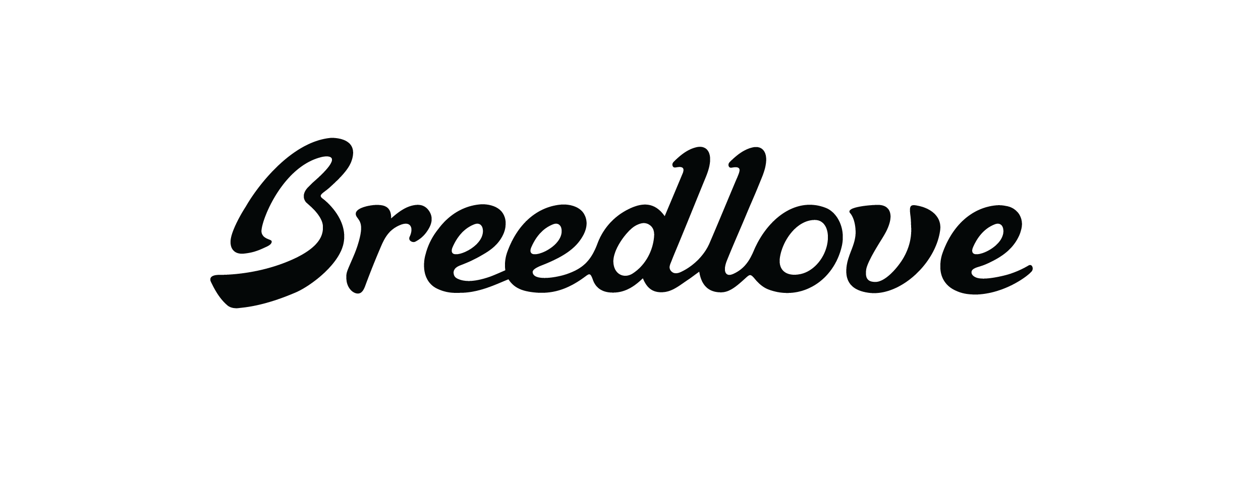 http://themuseummusic.com/wp-content/uploads/2016/02/Breedlove-logo-final-1.png